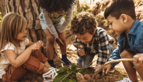 Nature Discovery Kits